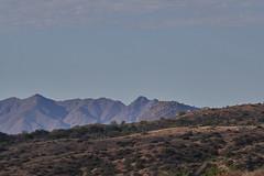 042020193496 (Lake Worth) Tags: landscape landscapes nature