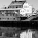 Henningsvær Harbor