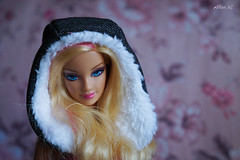 Barbie Fashionistas 2012 (Alice. M.) Tags: barbie fashionistas doll 16 barbiefashionistaswithpet2012