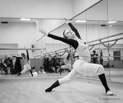 Mulvabé 11.12.2016-4 (Fabrice Parisi) Tags: dance danse ballet ballerina classique spectacle scene