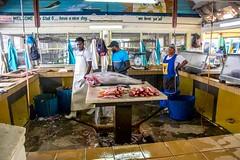 Fish Market (Tony Shertila) Tags: americas nikon5300 northamerica barbados bridgetown caribean carving cruise fishmarket ship tourist worldcruise 201901181528380 market fish stall shop