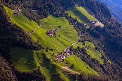 Steep, Südtirol (::ErWin) Tags: parcines trentinoaltoadige italien südtirol vinschgau meran meranerhöhenweg steep medow steil wiesen bergbauer bauernhof wiese green grün partschins tabland southtyrol
