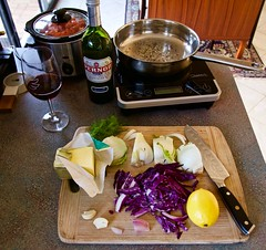 Getting Ready To Fix Lunch (Padmacara) Tags: z6 nikkor2485mm food fennel redcabbage induction garlic shallot pernod lemon
