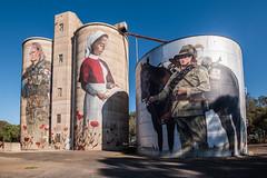 Silo art devenish Victoria Australia (crispiks) Tags: devenish victoria australia nikon d750 1635 f4 silo art cam scale