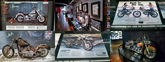 Harley-Davidson Museum (Milwaukee, Wisconsin) (@CarShowShooter) Tags: geo:lat=4303178833 geo:lon=8791647333 geotagged unitedstates usa 400westcanalstreet america building chopper cycle daytrip destination exhibit exhibition exhibitions harley harleydavidson harleydavidsonmotorcycle harleydavidsonmotorcyclemuseum harleydavidsonmotorcycles harleydavidsonmuseum hawg historic historymuseum hog menomoneeriver milwaukee milwaukeetourism milwaukeewi milwaukeewisconsin mke motorbike motorcycle motorcyclearchives motorcyclemuseum museum roadhawg roadhog signaturemotorcycles tourist touristattraction touristdestination transportmuseum travel travelmilwaukee travelphotography travelwisconsin vintagemotorcycle wi wisconsin wisconsintourism wwwharleydavidsoncom americanmotorcycles