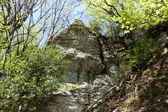 Hike to Mont Orchez (*_*) Tags: forest 2019 may afternoon spring printemps europe france hautesavoie 74 cluses savoie hiking mountain montagne walk marche randonnee nature montorchez chablais faucigny
