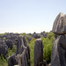 Stone Forest / Shilin