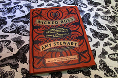 Wicked Bugs - Amy Stewart (siamesepuppy) Tags: insect insecto insecte macro bug arthropod arthropoda invertebrate arachnid spider ccattributionlicense creativecommons cclicense book entomology research