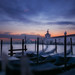 Venetian paths 162(Punta della dogana)
