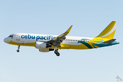 Cebu Pacific Air - Airbus A320-214 / RP-C3276 @ Manila (Miguel Cenon) Tags: cebupacific cebupac cebpac ceba320 rpll planespotting ppsg philippines plane 5j airplanespotting airplane apegroup appgroup airport airbus airbusa320 a320 manila nikon naia d3300 narrowbody wings wing window flying fly winglet twinengine aircraft aviation sky tree cockpit building rpc3276