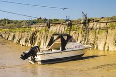Waarde (Omroep Zeeland) Tags: getijdenhaventje waarde eb vloed tij laag kade kademuur haven slik vissersbootjes
