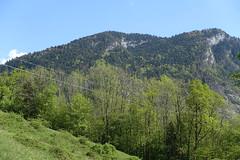 Montagne de Chevran @ Hike to Mont Orchez (*_*) Tags: hiking mountain montagne nature printemps randonnee walk cluses europe marche france spring hautesavoie 74 2019 may savoie afternoon