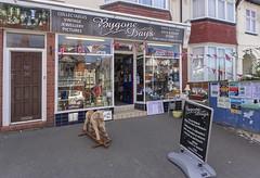 Bygone days (rhianwhit) Tags: shop antiques junk art bygone rocker horse door building notice sign