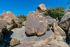 1902 Petroglyphs 01 (c.miles) Tags: coronadonationalforest petroglyphs santacatalinamountains sutherlandwashrockartdistrict