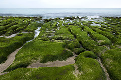 Nature as an installation artist (milton sun) Tags: laomeigreenreef taiwan taipei seascape wave ocean shore seaside coast pacificocean landscape outdoor clouds sky water rock sea sand beach nature green 老梅綠石槽