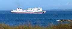 19 04 16 BF Connemara Roscoff (4) (pghcork) Tags: brittanyferries brittany bretagne roscoff connemara ferry ferries carferry 2019