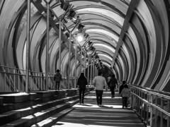 Puente de Arganzuela (Lea Ruiz Donoso) Tags: puente monumental arganzuela bridge peatonal pasarela urbana icono madrid río manzanares arquitectura sony monochrom blancoynegro bw bn 2019 madridrío
