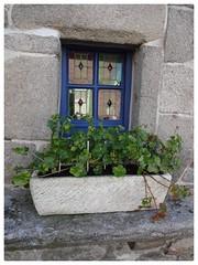 Roscoff Window Bretagne (Jane L Edwards) Tags: bretagne roscoff colouredwindow windows