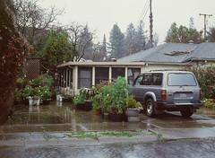 Sunnyvale, California (bior) Tags: pentax645nii pentax645 6x45cm ektachrome e200 kodakektachrome slidefilm mediumformat 120 sunnyvale street rain suburbs car driveway garden toyota landcruiser greenhouse
