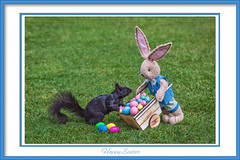 Happy Easter Everyone (hey its k) Tags: 2019 backyard bunny canon5dmarkiv easter eggs squirrels hamilton ontario canada imga2463ee