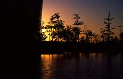 Sunset Over Cultural Center (Qmelfy) Tags: v750 50mm leica analog velvia50 leicam6 fuji leicam6ttl085 fujichrome filmphotography leicasummicron50mmf20v m6 summicronm50mmf2 shuwaikh kuwaitcity kuwait