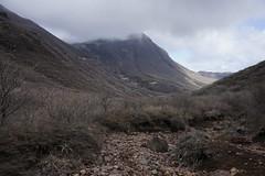 20190417a73_7374 (Gansan00) Tags: ilce7m3 α7ⅲ sony japan 大分 oita 日本 九重連峰 登山 landscape snaps ブラリ旅 04月 fe24105f4 trekking travelphotography 山