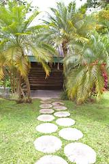 IMG_1437 (Jennika Argent) Tags: jennikaargent barbados caribbean west indies