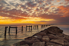 Clifton Springs 2019-05-14 (5D_32A4768-774) (ajhaysom) Tags: 100xthe2019edition 100x2019 image27100 cliftonsprings bellarinepeninsula canoneos5dmkiii canon24105l
