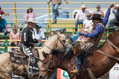 Strathmore Stampede 2018 (tallhuskymike) Tags: strathmorestampede event strathmore alberta rodeo 2018 cowboy horse horses outdoors action prorodeo