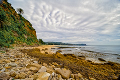 Furrows in the sky (JustAddVignette) Tags: australia beach clouds cloudy cloudysunrise headlands landscapes newsouthwales newport ocean rocks sand seascape seawater seaweed sky sydney water