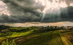 Rays of ligh (armandocapochiani) Tags: landscape capochiani capochianiarmando canneto pavia panorama paesaggio italy
