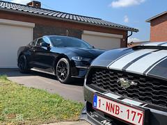 Mustang_Fever_zaterdag_-18