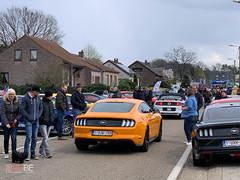 Mustang_Fever_zaterdag_-27