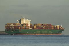 CSCL LE-HAVRE - Nieuwe Waterweg - Hoek van Holland (Jan de Neijs Photography) Tags: ship containerschip containership containerreus vessel megaschip zuidholland holland nederland thenetherlands dieniederlande southholland tamron150600g2 tamron tamron150600 150600 g2 cargo schiff containerschiff maasvlakte rotterdam hvh nl hoekvanholland containers diana cscl imo9307243 9307243 lehavre maasmond nieuwewaterweg denieuwewaterweg dehoek