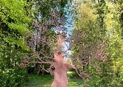 Iron tree (♔ Georgie R) Tags: casssculpturefoundation goodwood sussex