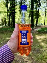 Day 19: Something Orange 111*365 (♔ Georgie R) Tags: picnic irnbru casssculpturefoundation goodwood sussex