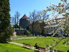 beim Kunstmuseum Solothurn Soleure 20. April 2019 (links Riedholzturm) (Martinus VI) Tags: solothurn solothurner kanton de canton ville stadt y190420 martinus6 martinus6xy martinus vi aare ambassadorenstadt schweiz suisse switzerland svizzera suiza