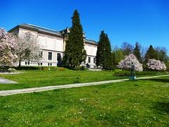Kunstmuseum Solothurn Soleure 20. April 2019 (Martinus VI) Tags: solothurn solothurner kanton de canton ville stadt y190420 martinus6 martinus6xy martinus vi aare ambassadorenstadt schweiz suisse switzerland svizzera suiza