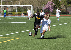 190420-N-XK513-0988 (Armed Forces Sports) Tags: 2019 armedforces sports soccer championship army navy airforce marinecorps coastguard usaf usmc uscg everettcismusa armedforcessoccer armedforcessports