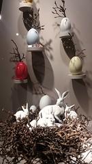 Munich gets ready for easter. Ludwigstrasse (sftrajan) Tags: ostern easter rabbit hase pascua munich germany conejo statue animal storefront mnichov münchen monachium deutschland allemagne
