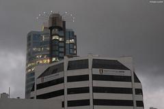 Immeubles au cœur de Wellington (philippeguillot21) Tags: immeuble building construction architecture wellington nouvellezélande newzealand océanie oceania pixelistes canon