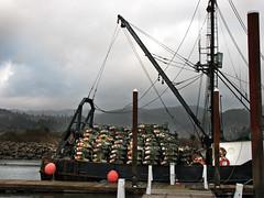Dungeness Crab Season (skipmoore) Tags: crabpots traps fishingboat garibaldi