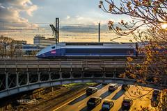Le TGV sous un beau soleil couchant Charebtonais (terryexpress) Tags: passiontrains tgv rail photo sncf photographie tgvduplex terryexpress highspeedtrain trainsspotters trainsspotter railway train photography