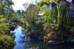 Betws-y-Coed, North Wales (Nina_Ali) Tags: backlit river water trees betwsycoed wales village welsh landscape unitedkingdom