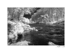 River Don IR III BW_8707 (The Terry Eve Archive) Tags: blackandwhite monochrome infrared ir riverdon thedon aberdeenshire