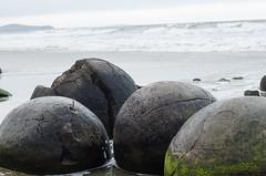 Moeraki (catburston) Tags: moeraki moerakiboulders otago coast rock stone rockformations volcanic nz newzealand beach