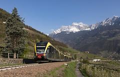 IMG_00236846_2019-04-13 (huerz) Tags: 009 012 atr100 gtw marling personenzug regionalzug reisezug sad sta vinschgauerbahn vinschgerbahn r107 p107 trentinoaltoadige italien