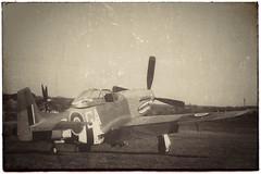 Sharkmouth at dawn … (marc.barrot) Tags: 4411602 kh774 112squadron raf sharksquadron gas aircraft monochrome vintage iwmduxford uk cb22 cambridge duxford duxfordaerodrome flyinglegends mustang p51d northamerican