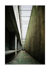 Narrow Corridor (Thomas Listl) Tags: thomaslistl color film filmphotography analog kodak minolta minoltax700 corridor windows kodakgold green wall lowlight path mood vanishingpoint lines posthallewürzburg urban abandoned