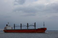 GLORIEUSE (angelo vlassenrood) Tags: ship vessel nederland netherlands photo shoot shot photoshot picture westerschelde boot schip canon angelo walsoorden cargo glorieuse